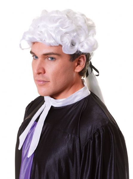 Adults Court Unisex Budget Wig Judge Barrister Brief Solicitor Fancy Dress